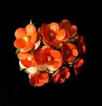 15 mm diameter paper flowers ORANGE (100/PK)